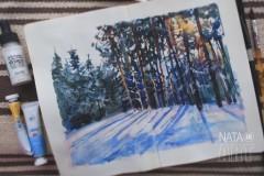 Про зимний лес под солнцем