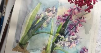 Hyacinths_watercolorsketsh